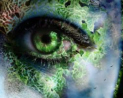 eyeimages